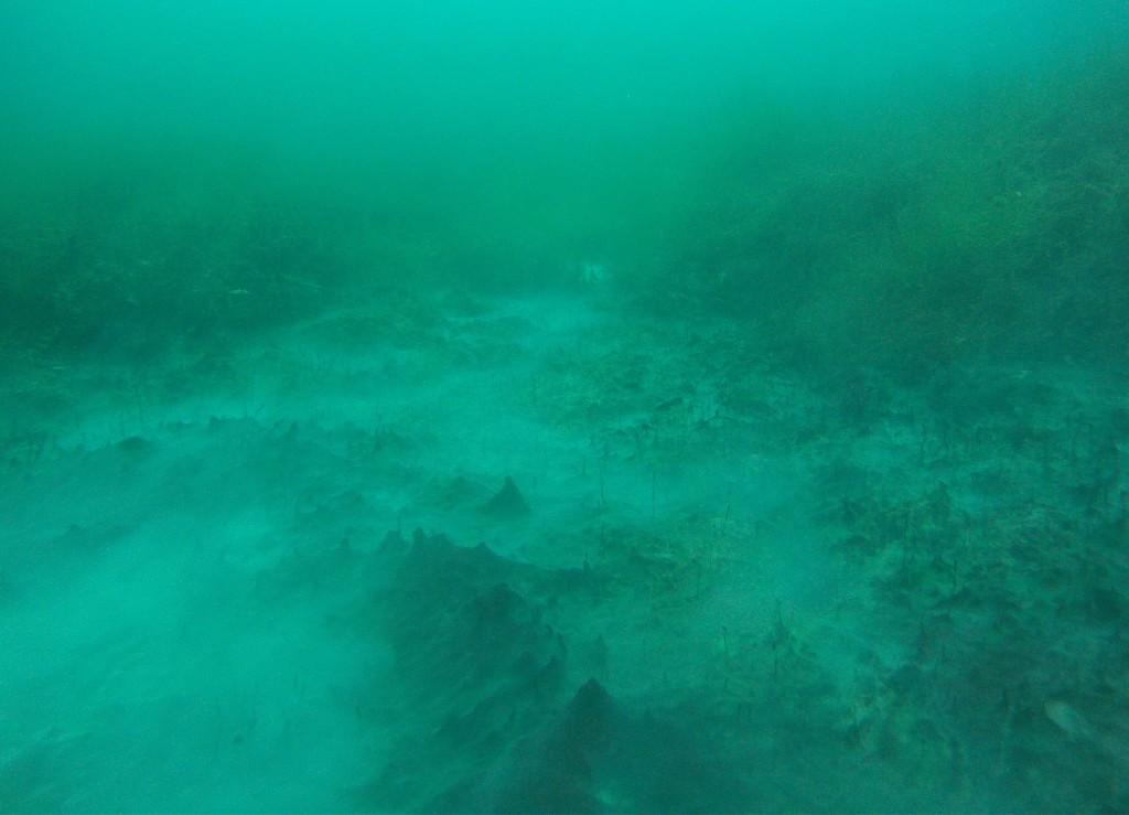 Unterwasser-Bergkette