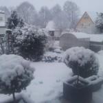Schnee 3