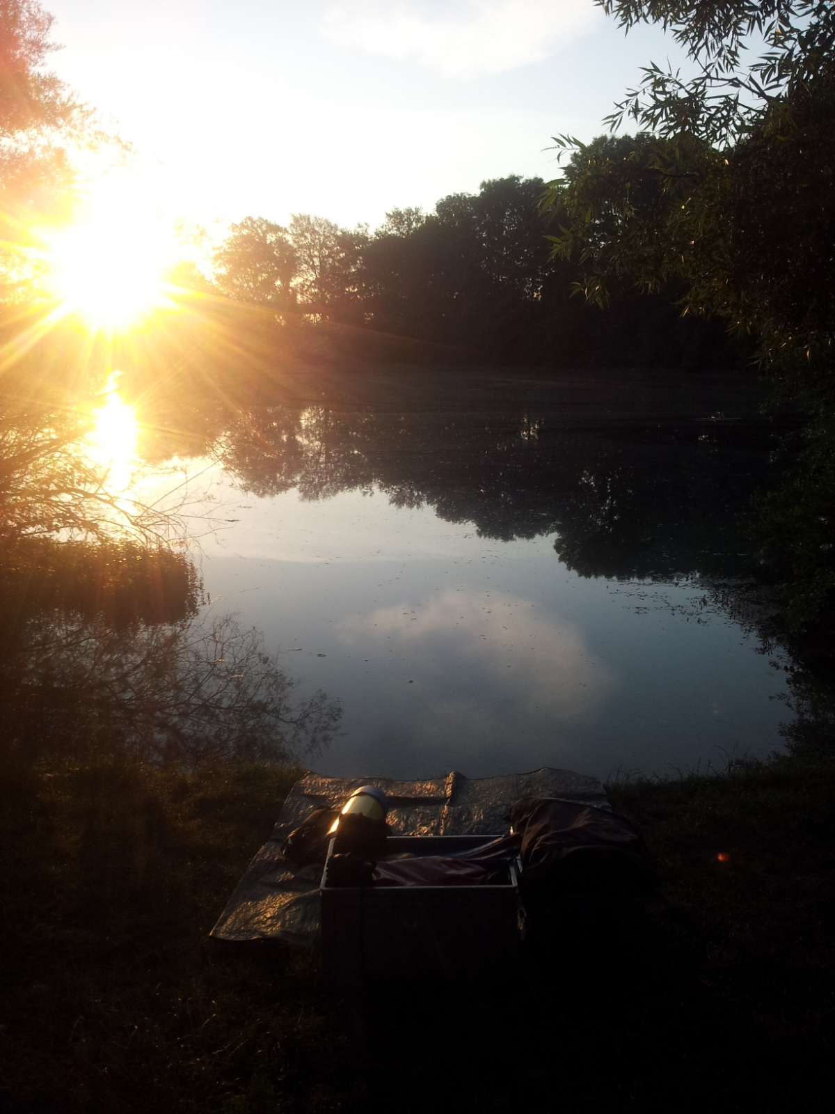 Sonnenaufgang am Echinger Weiher