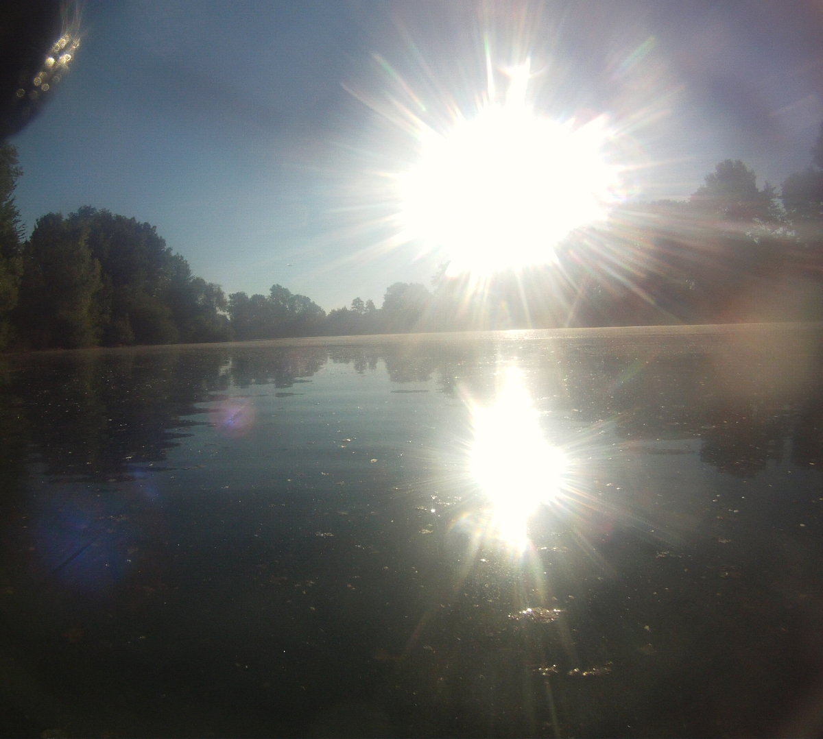 Sonne über dem Echinger Weiher