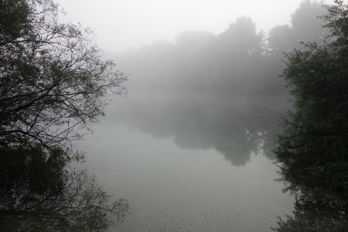 In Nebel gehüllter Echinger Weiher