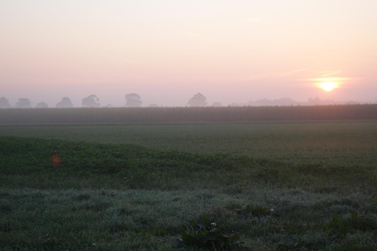 Sonnenaufgang auf dem Weg zum Echinger Weiher