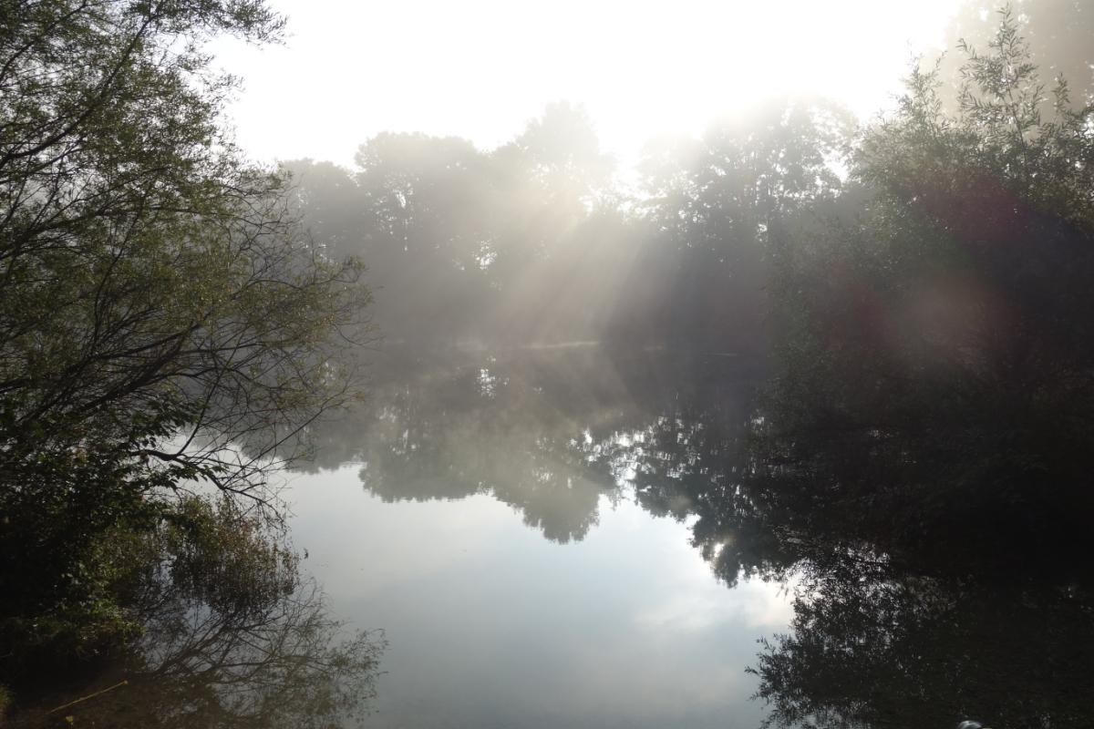 Sonnenstahlen treffen auf den Echinger Weiher