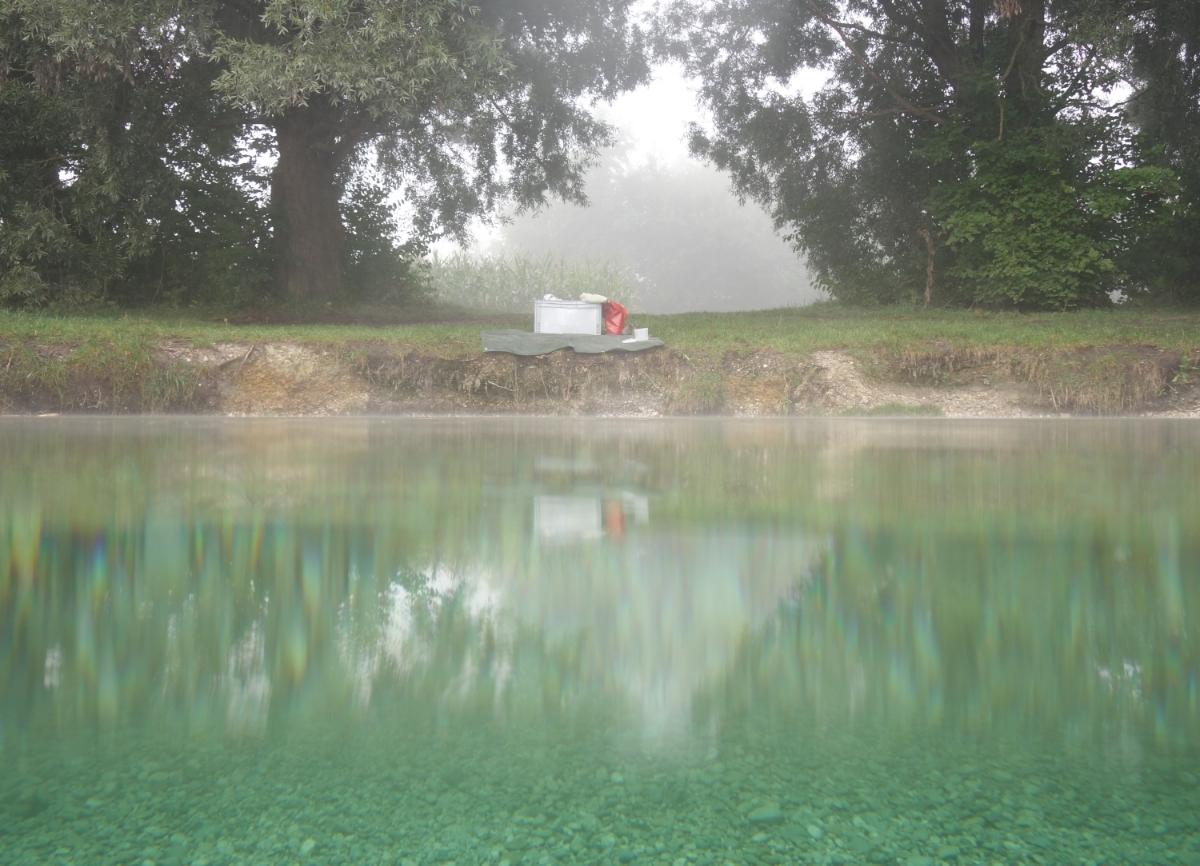 Blick vom See zum Ufer, teilweise unter und über Wasser photograpiert