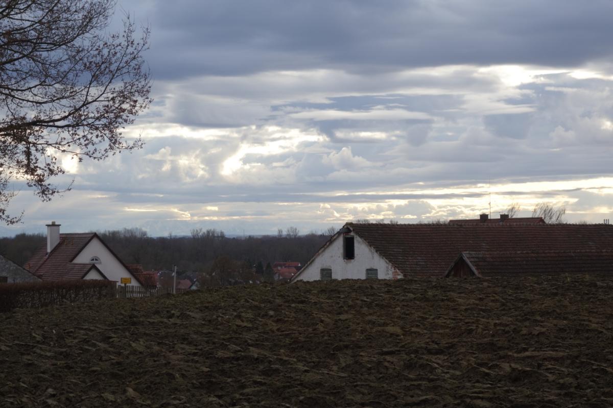 Landschaft mit Blick auf die Alpen, die am Horizont zu sehen sind