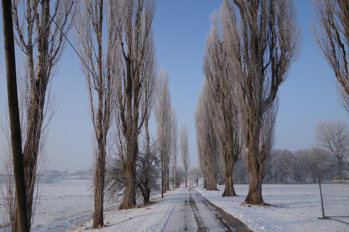 Zufahrt zum Schießplatz Hebertshausen