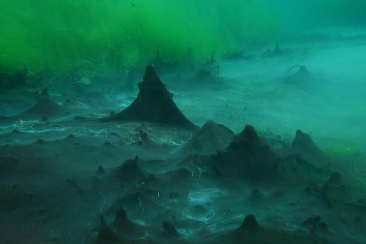Bizarre Unterwasserlandschaft