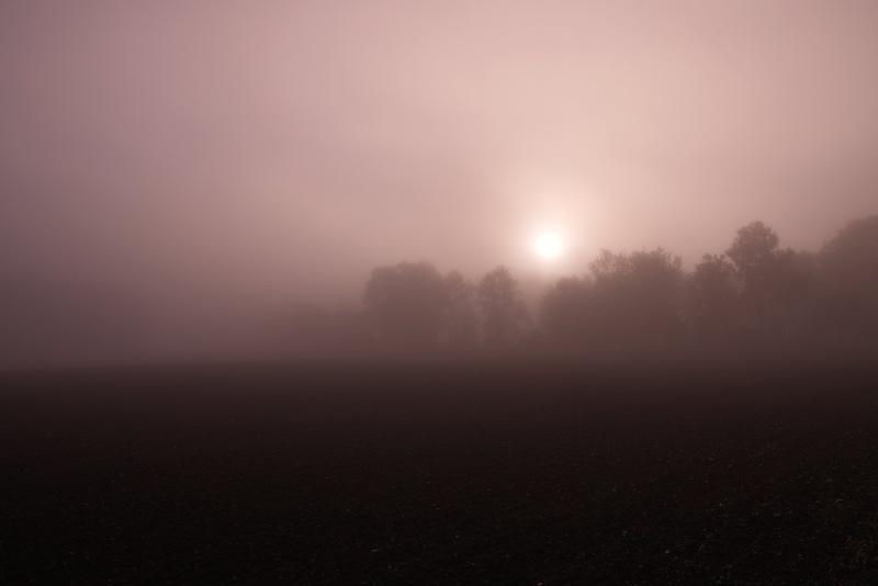 Aufgehende Sonne hinter Nebelschleier
