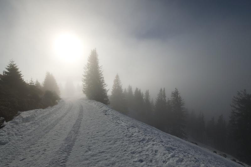 Nebelschwaden ziehen auf