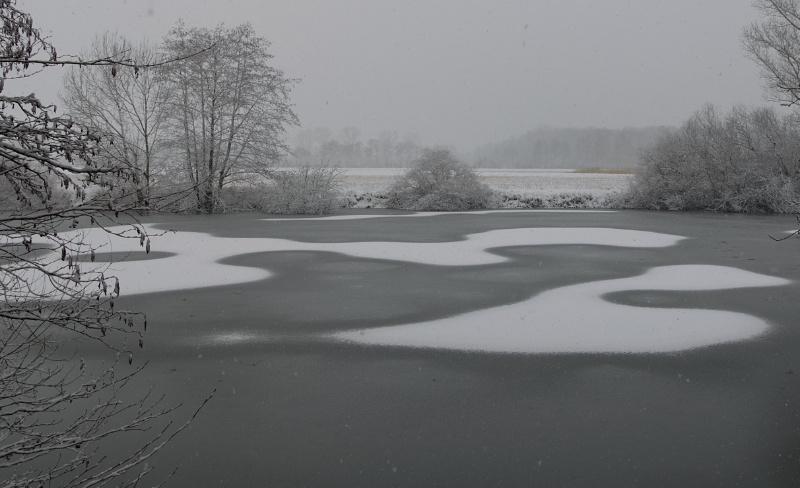 Schneeornamente auf dem zugefrorenen Fischweiher
