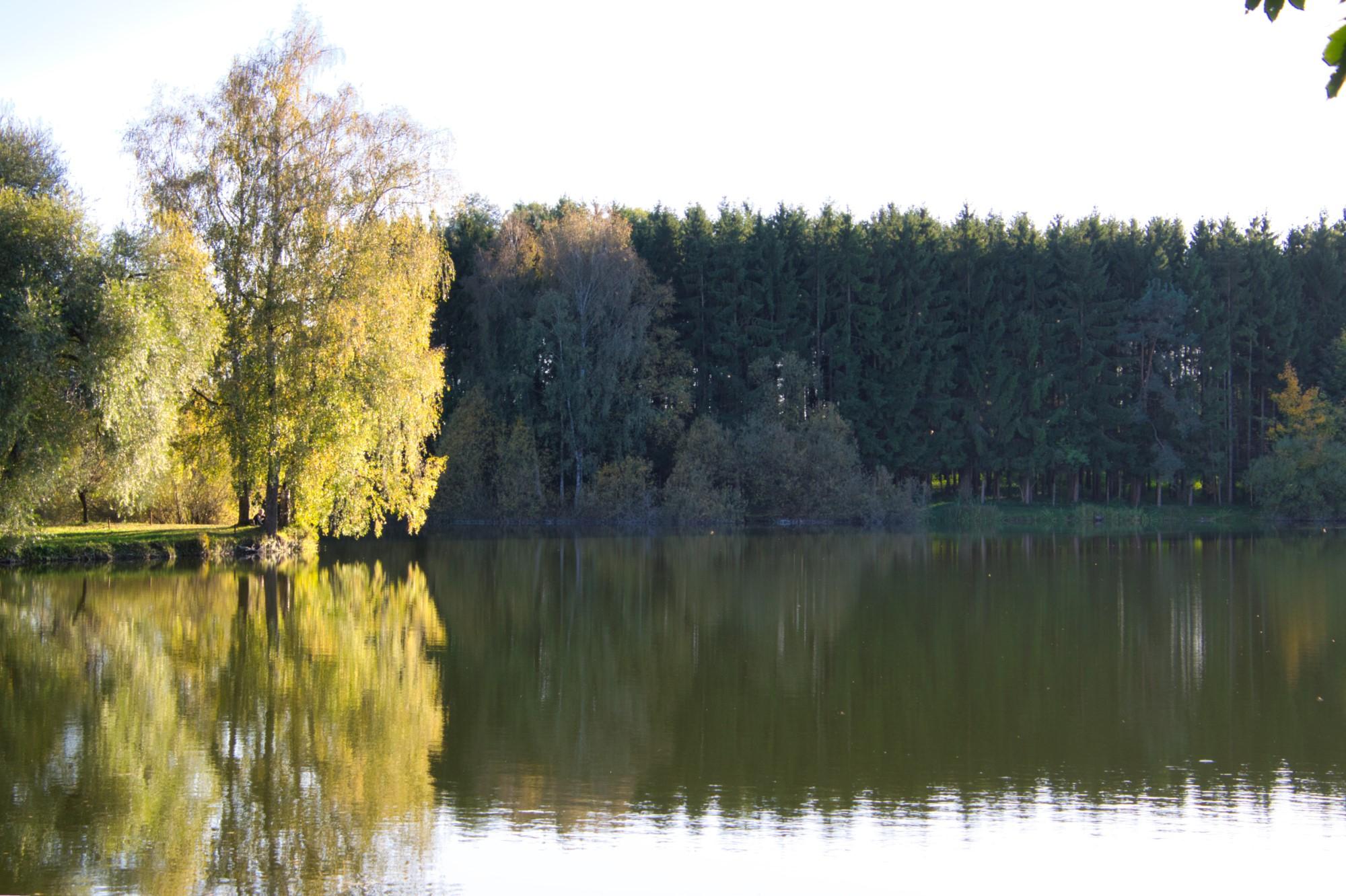 Herbstlicher Weiher